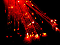Red Fibers (cc by-sa 2.0) Tyler Nienhouse