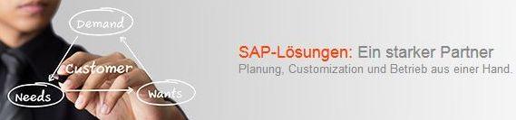 SAP_Banner_Loesungen