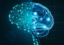 <strong>Künstliche Intelligenz ist auf dem Vormarsch,</strong> aber aus neurowissenschaftlicher Sicht sind Algorithmen noch lange nicht in der Lage, den Menschen den Rang abzulaufen. Bild: © istock.com / kishore kumar
